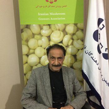 مهندس محسن سیدی